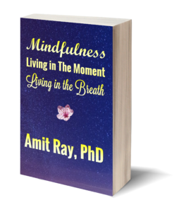 Mindfulness : Living in the Moment - Living in the Breath