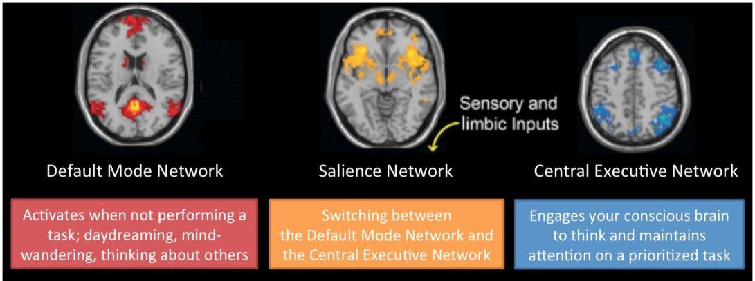 Brain creativity three network areas