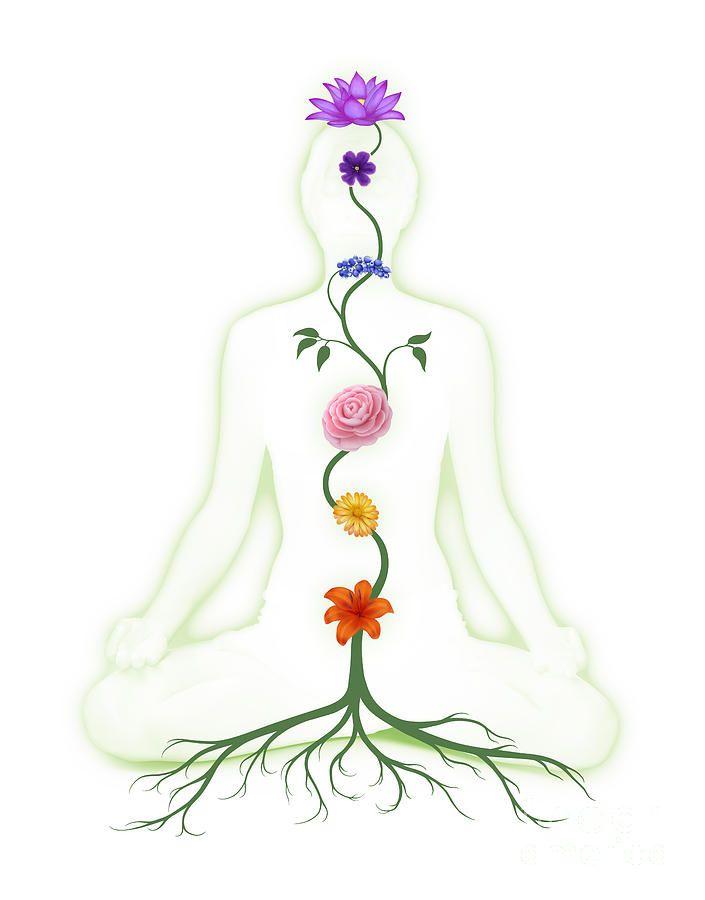 chakra flowers