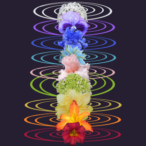 chakra vibrations