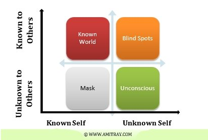 Leadership Blind Spot Window