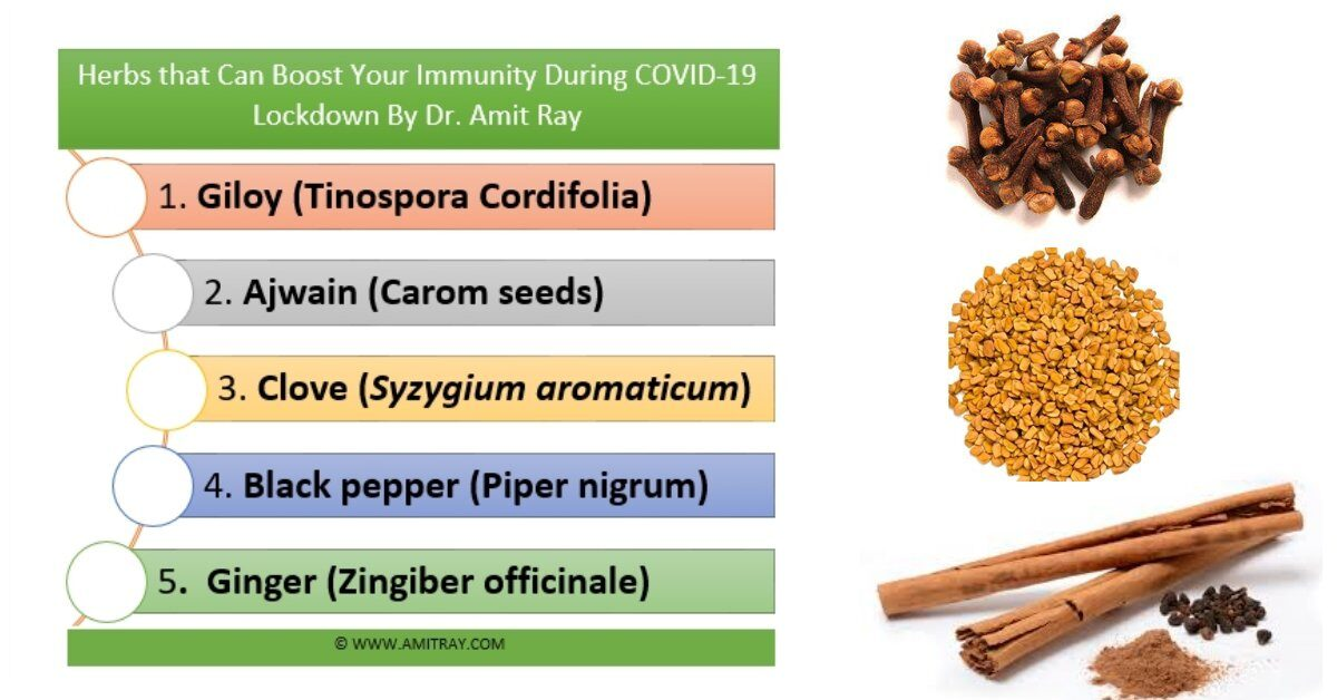 Herbs to Boost your Immunity