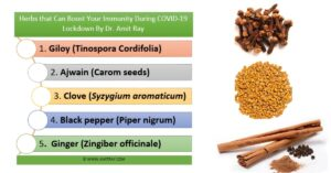 Herbs that Can Boost Your Immunity During COVID-19 Lockdown