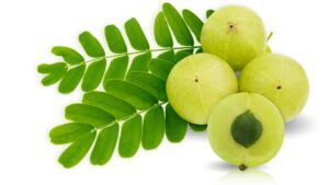 Amla fruits