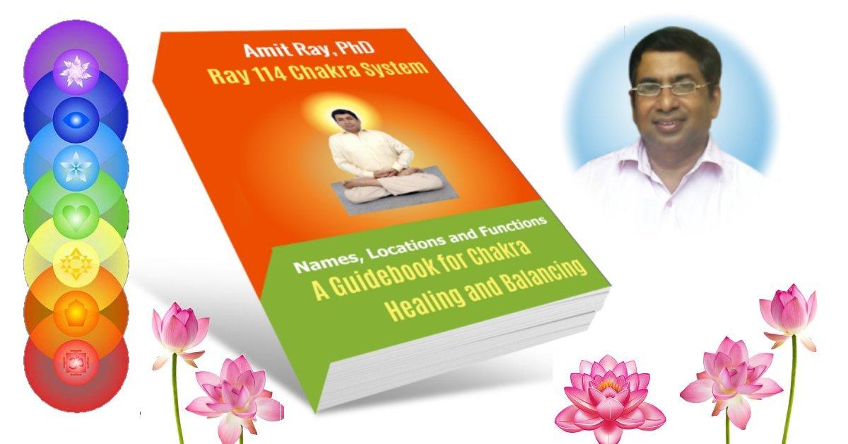 114 Chakra Book Amit Ray Teachings