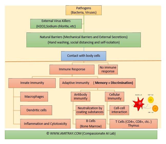Immune Response Types and 114 Chakras Amit Ray