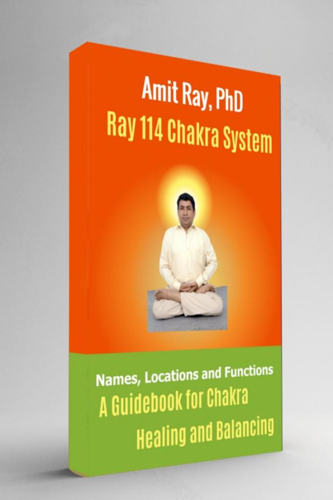 Ray 114 Chakra Healing Book Amit Ray Teachings