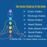 Seven Chakras in human body Amit Ray Teachings