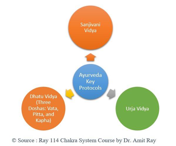 Ayurveda Key Protocols