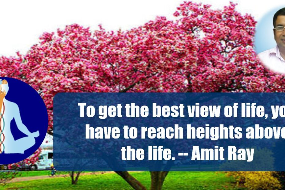 Best view of life Amit Ray Meditation Quotes