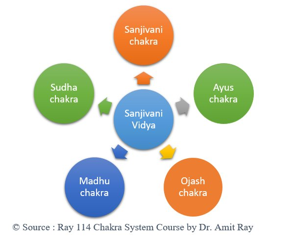 Sanjivani Vidya Amit Ray Teachings