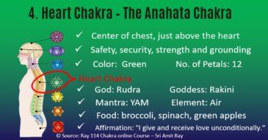 Heart Chakra Summary