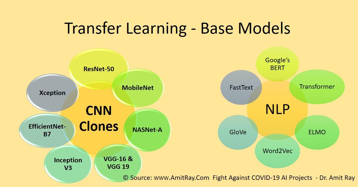 Transfer Learning Base Models