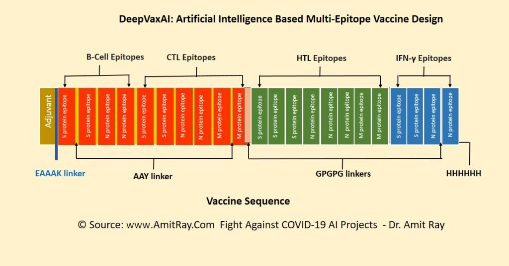 COVID Vaccine Sequence with HTL CTL B-Cell epitopes