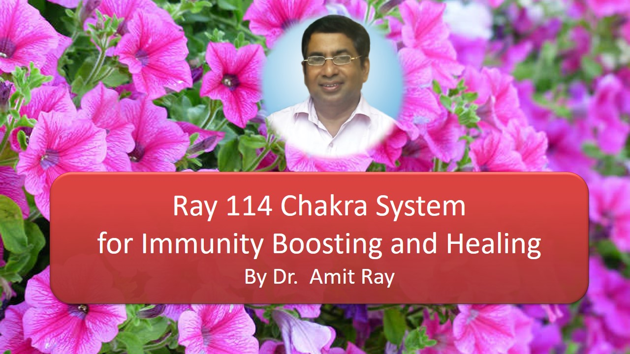 Ray 114 Chakra System for Immunity Boosting Amit Ray Teachings