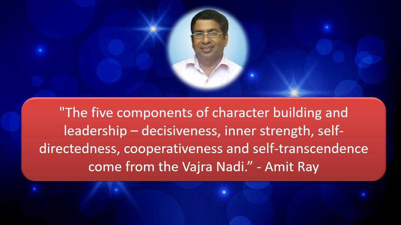 Vajra Nadi Amit Ray Teachings