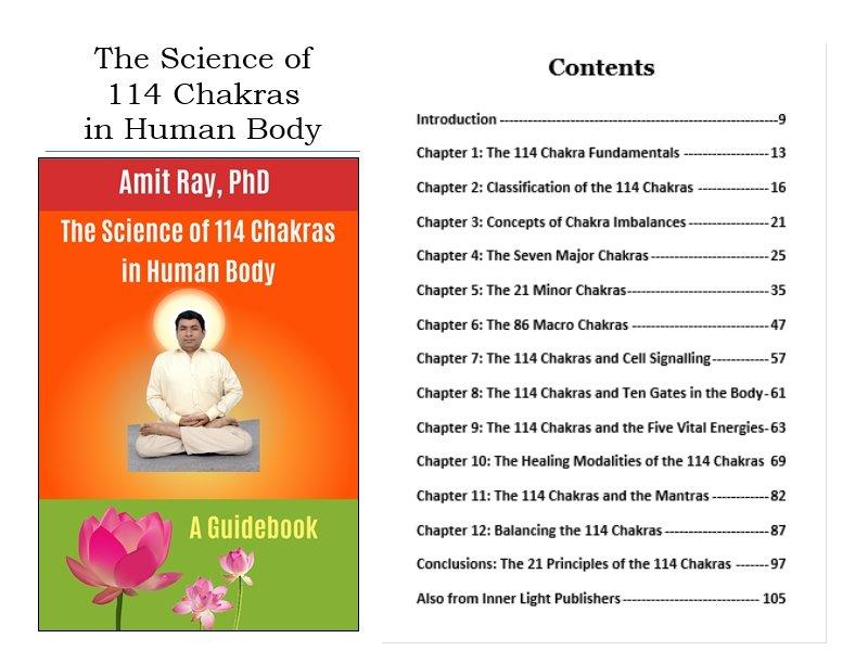 114 Chakras pdf book