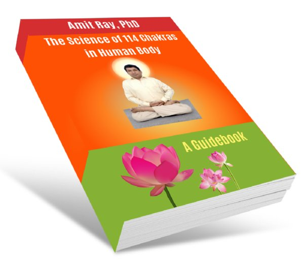 The Science of 114 Chakras in Human Body