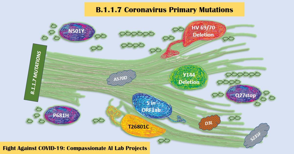 B.1.1.7 New Variant Coronavirus Mutations