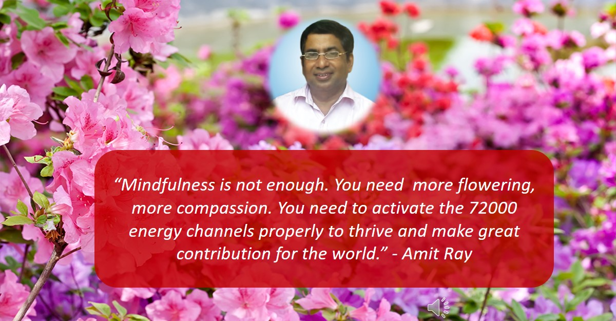Leadership Mindfulness is not enough you need more Compassion Sri Amit Ray Teachings