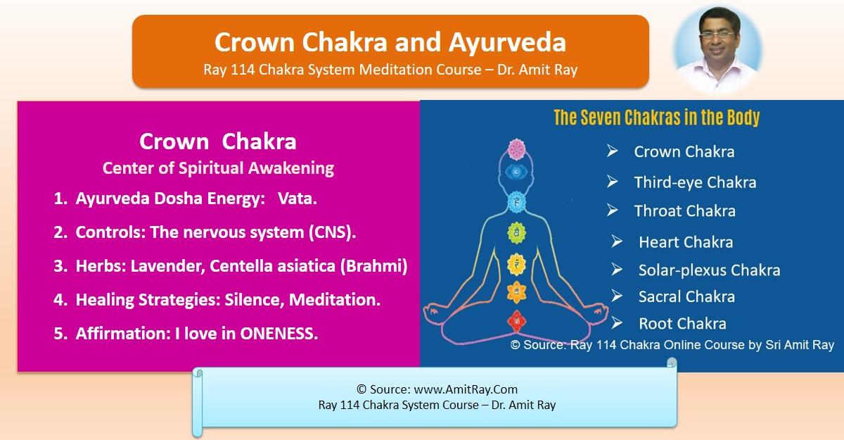 Ayurveda and the Crown Chakra Vata Pitta Kapha Sri Amit Ray Teachings