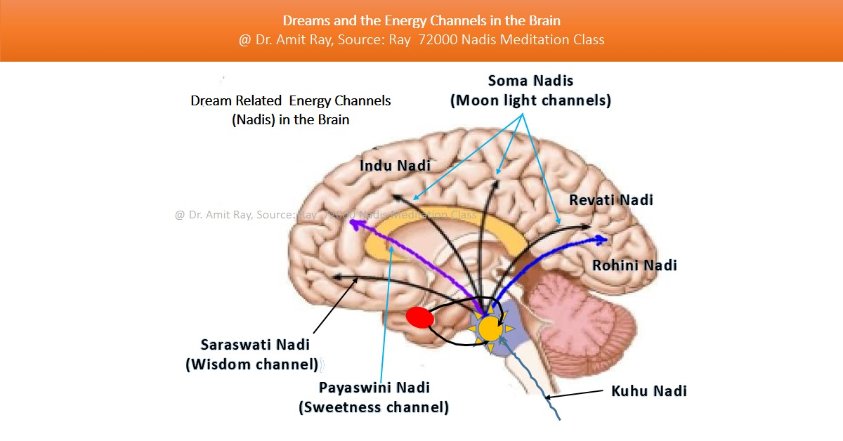 Dreams and the energy channels in the brain Sri Amit Ray Teachings