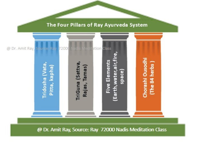 Four Pillars of Ayurveda System  Sri Amit Ray Teachings