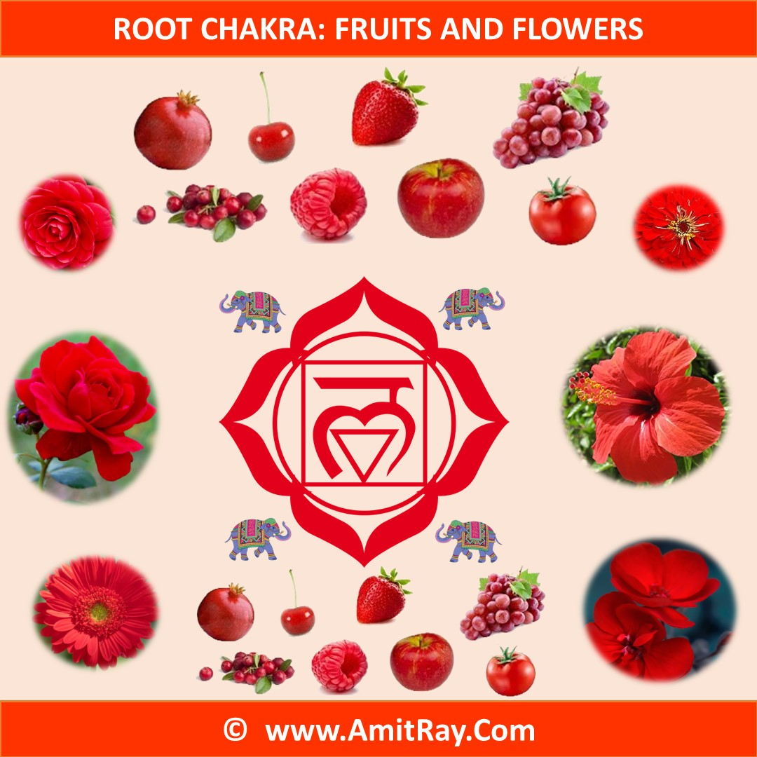 Root Chakra Fruits and Flowers